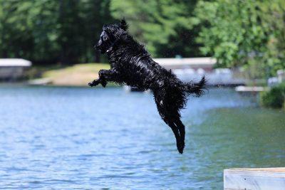 Captain swimming