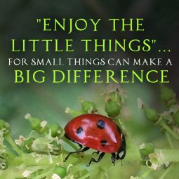 Small Things Can Make a Big Difference