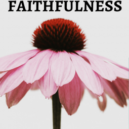 Great is Thy Faithfulness. We sang this hymn the other night at our home group. I'm always amazed at how much some people can say in such a few words. #faithful #faithfulness #biblicalencouragement