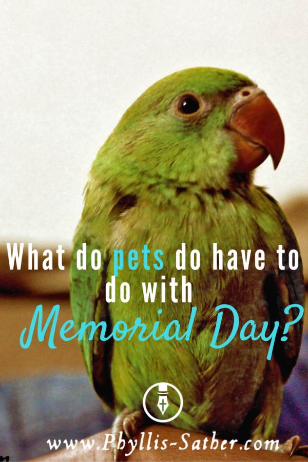 What Do Pets have to do With Memorial Day?