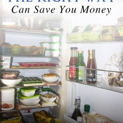 Storing Your Food The Right Way Can Save You Money