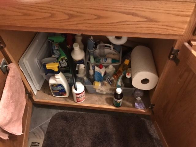 Under bathroom sink before